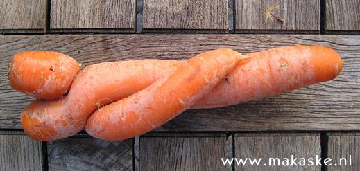 20090411-wortel.jpg