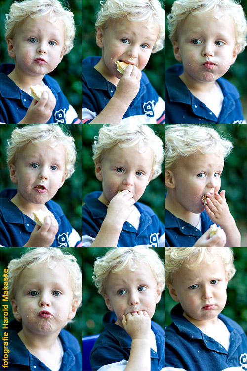 20100803-collage.jpg