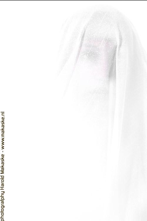20120402-9I0X3527-2.jpg