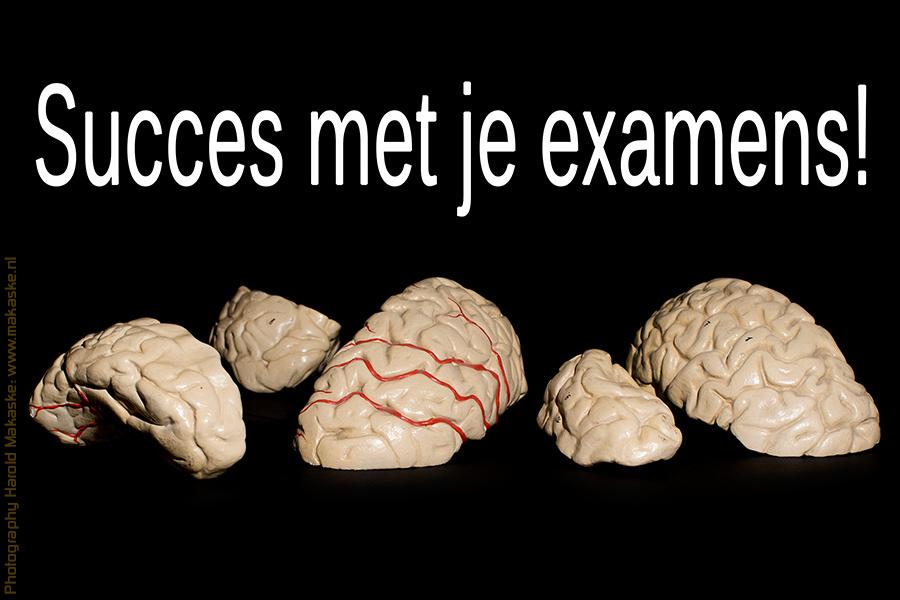 examens.jpg